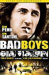Bad Boys DVD New, Free shipping