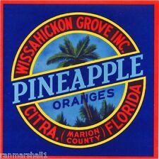 Citra Marion County Florida Pineapple #4 Orange Fruit Crate Label Art Print