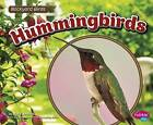Hummingbirds by Lisa J Amstutz (Paperback / softback, 2016)
