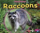 Raccoons by Mari Schuh (Hardback, 2015)