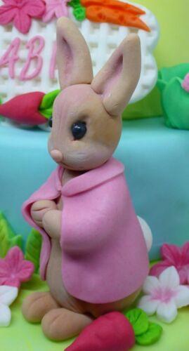 Peter Rabbit Friend Handmade Edible Birthday Baby Shower Christening Cake Topper