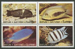 Fish-Marine-Life-mnh-se-tenant-block-of-4-stamps-Batum