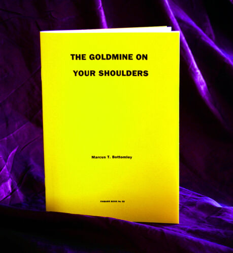 Finbarr Occult  Magick Witchcraft Grimoire THE GOLDMINE ON YOUR SHOULDERS