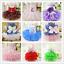 Pet-Small-Dog-Cat-Clothes-Puppy-Cotton-Lace-Tutu-Skirt-Apparel-Princess-Dress thumbnail 1