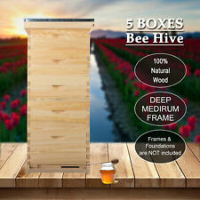 10 Frame Size Langstroth Beekeeping Bee Hive Framebeehive Kits Withqueen Excluder