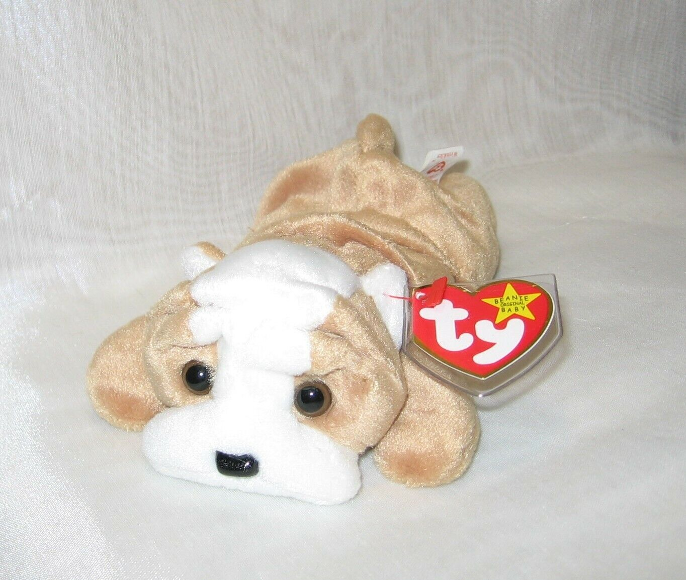 TY Beanie Baby Wrinkles - RARE with errors - 117