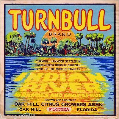Oak Hill Florida Turnbull #1 Orange Citrus Fruit Crate Label Art Print