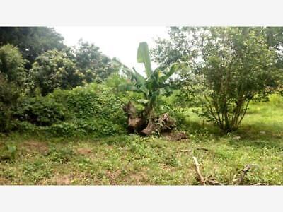 Terreno en Venta en Ixtlahuacan