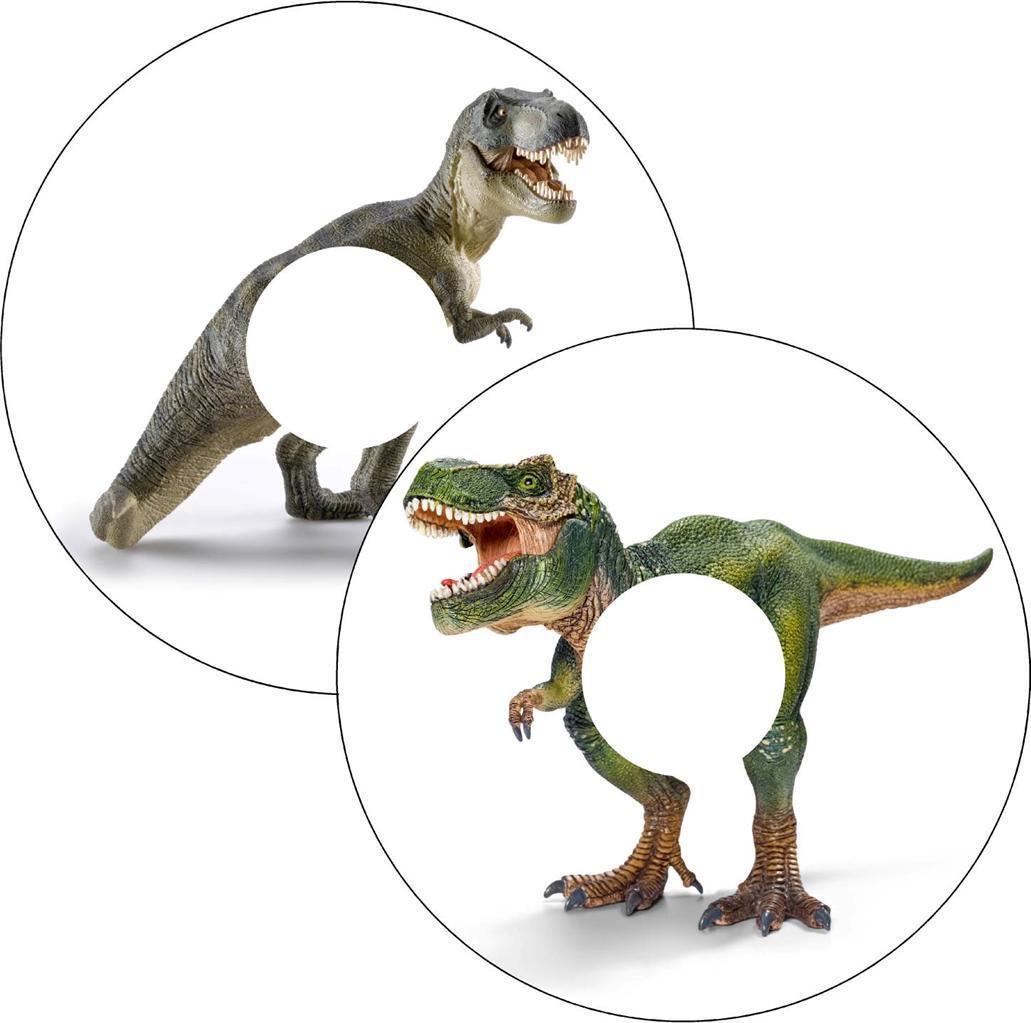 s l1600 - Silla de Ruedas Protectores de Radios Pegatinas Dinosaurio