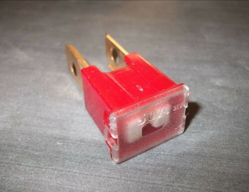 Red *Top Quality! Japanese PAL slow blow fuse Male 50 amp