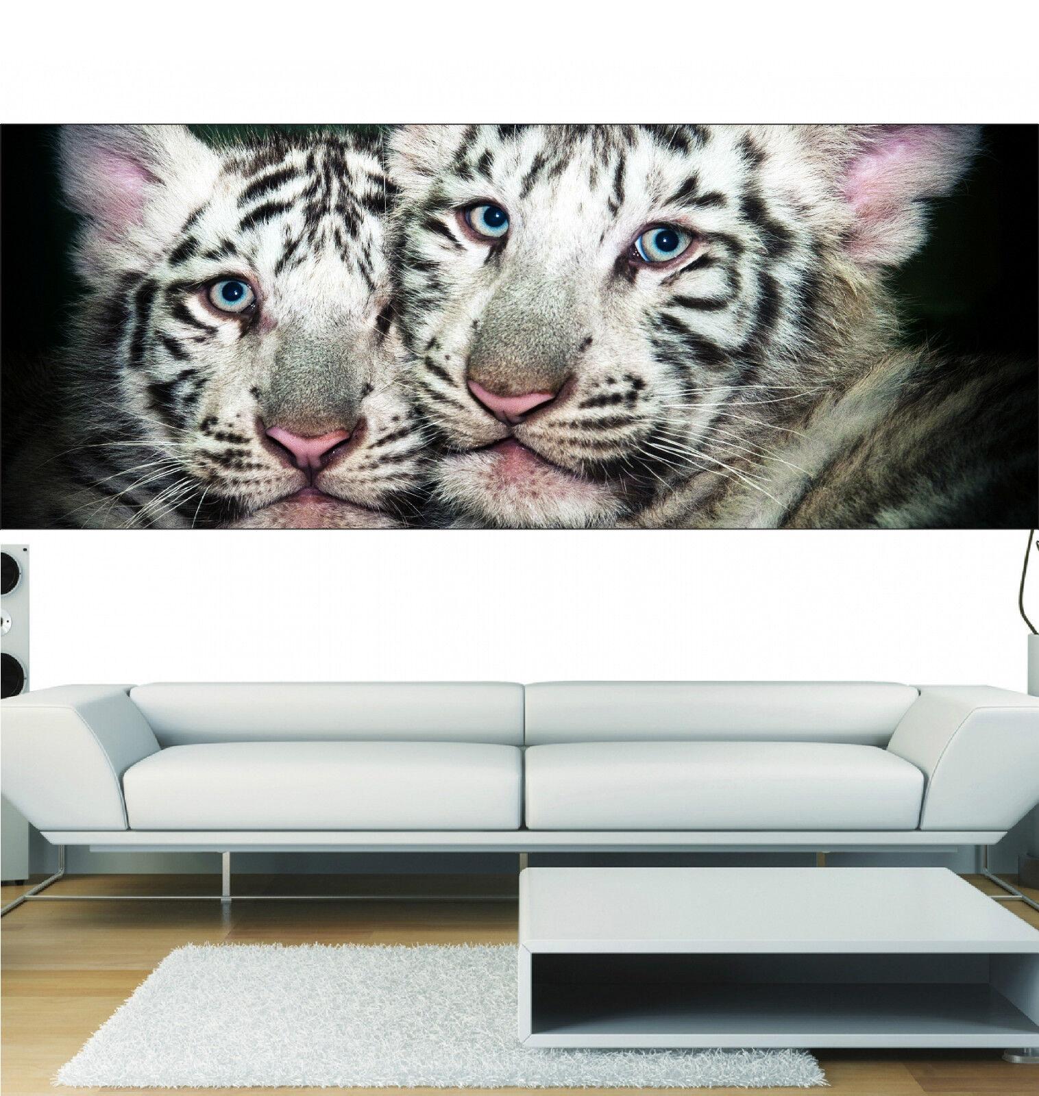 Aufkleber Panorama Deko Baby Tiger Ref 3663 (13 Größe)