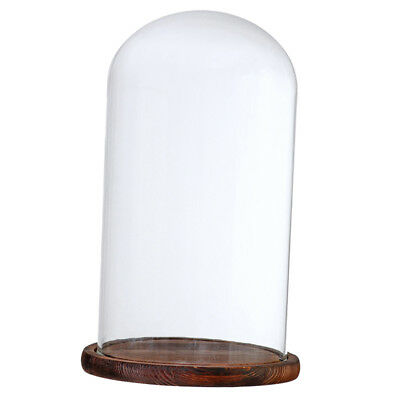 Glass Dome with Wood Base for Home Wedding Centerpiece Display Decor/_Brown B