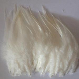 BULK 50pcs Cream Beige Rooster Feathers 7-11cm DIY Craft Millinery Dream Catcher