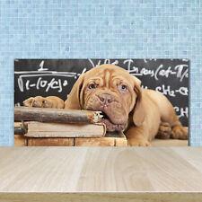 Küchenrückwand Spritzschutz aus Glas 100x50 Deko Tiere Hunde und Katzen