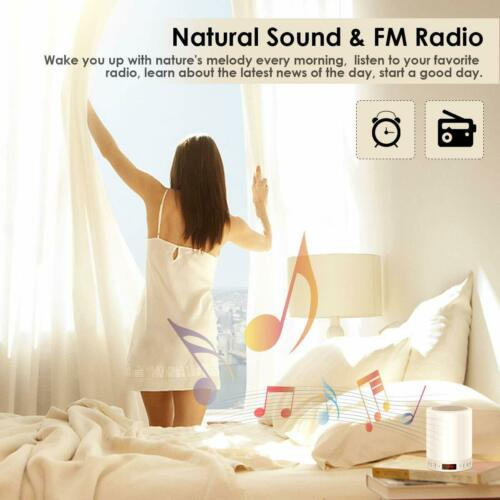 Bedside Lamp Mood Light with Bluetooth Speaker Wake Up Light with FM Radio