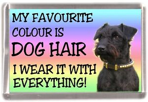 Patterdale-Terrier-Fridge-Magnet-034-My-Favourite-Colour-is-Dog-Hair-034-by-Starprint