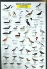 California Coastal Birds 9780898862614 by Craig MacGowan