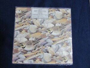 Vtg-Marcel-Schurman-Company-Imported-Gift-Wrapping-Paper-Seashells-amp-Seabirds