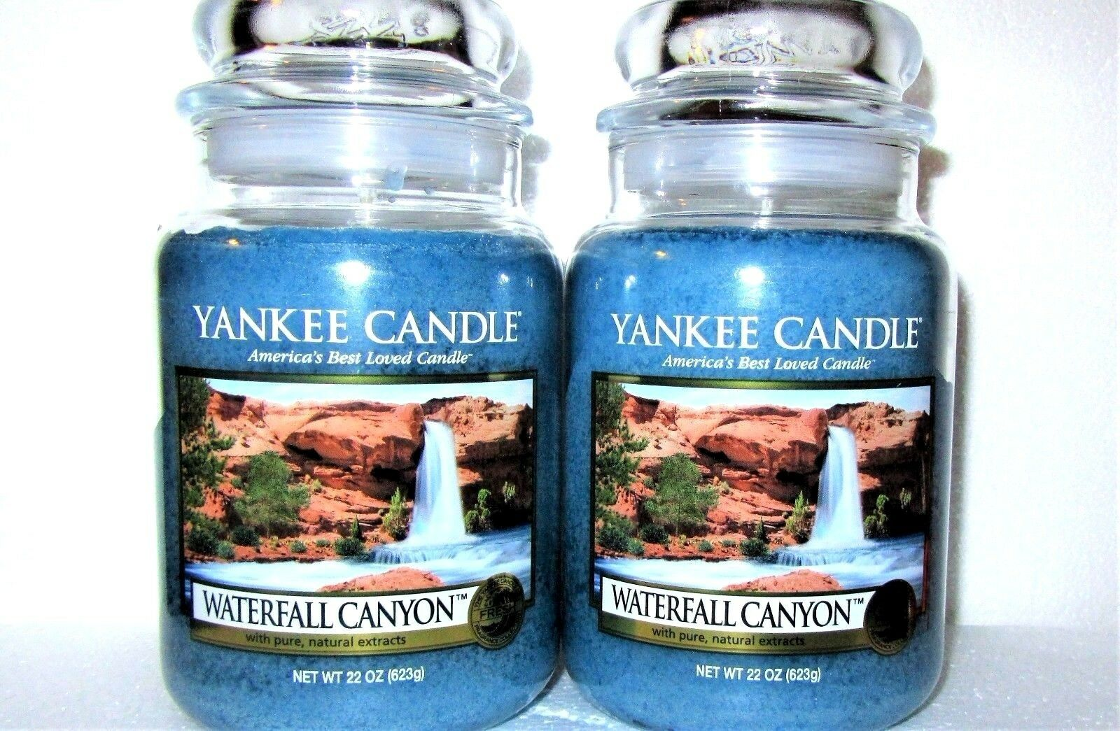 SET OF 2 Yankee Candle Retired  WATERFALL CANYON  Large 22 oz.WHITE LABELRARE
