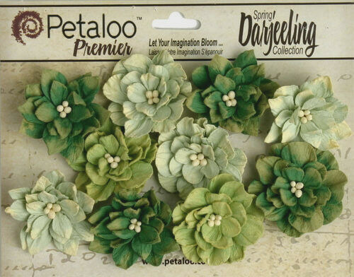 Dahlia Mix GREEN 10 Teastained Paper Flowers 40mm across Darjeeling Petaloo Ver
