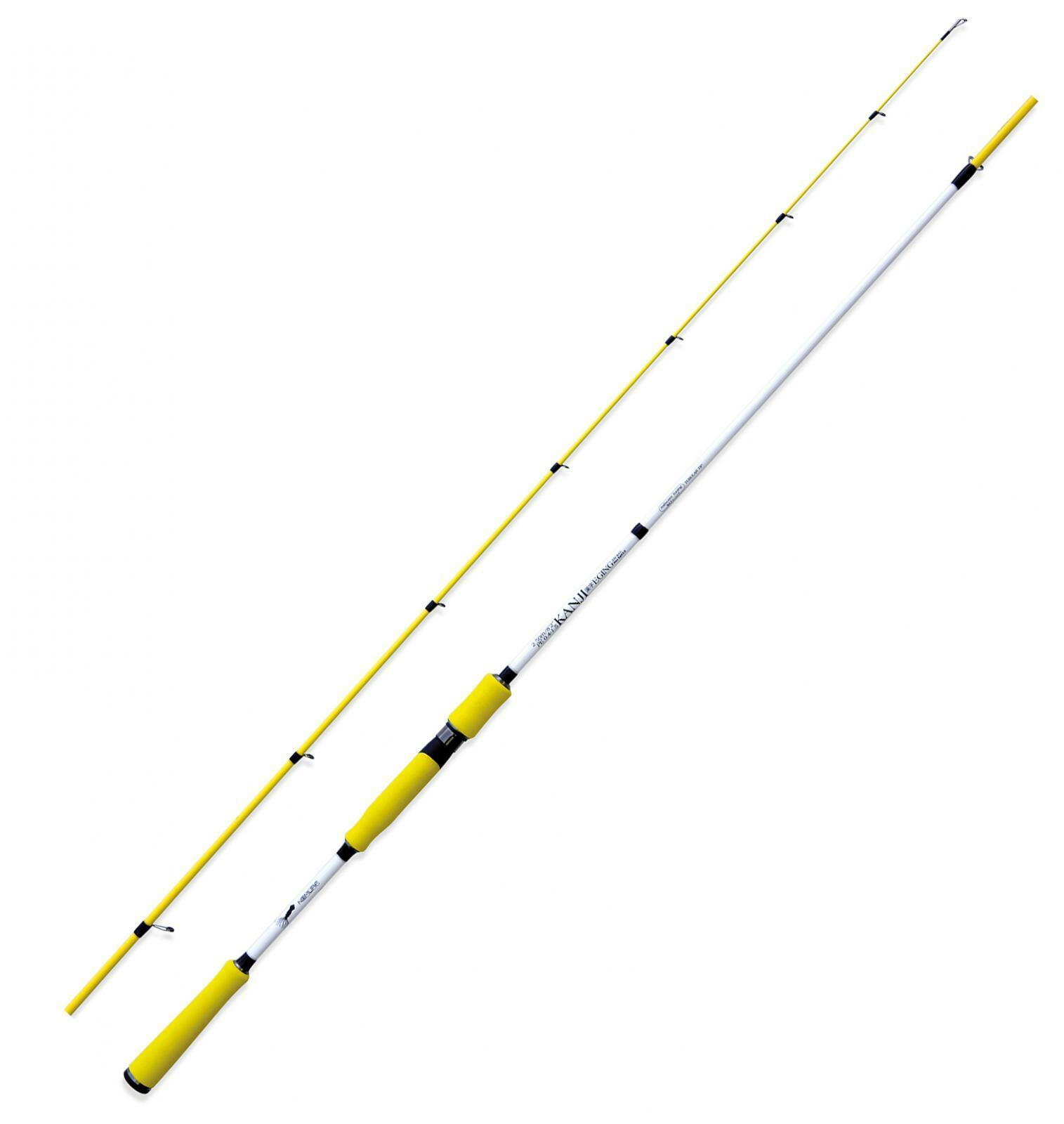 NM23112025 Nomura canna pesca Eging SW Kanji 250 seppia cefalopodi RNG