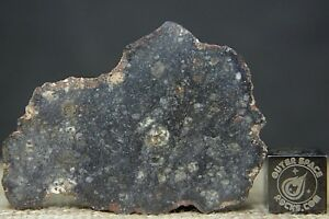 NWA-11704-Polymict-Eucrite-Breccia-HED-Meteorite-13-3-gram-windowed-fragment