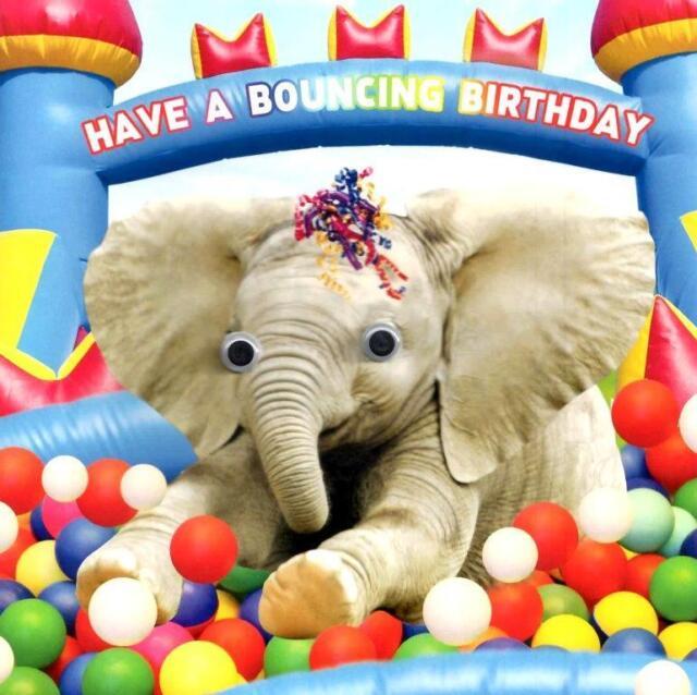 Ball Pit Bouncing Googlies Birthday Card Fun Tracks Wobbly Eyes Greeting Cards