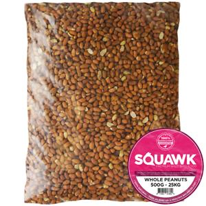 SQUAWK Whole Peanuts - Fresh Premium Wild Garden Bird Seed Food Nut Energy Feed