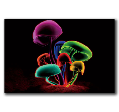 24x36 40in E2248 Art Psychedelic Trippy Magic Mushroom Abstract Poster Hot Gift
