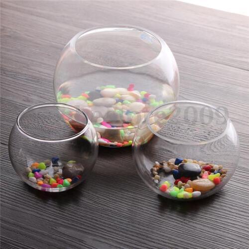 Runde klar Glas Vase Fish Tank Ball Schüssel Blume Pflanzer Terrarium Home