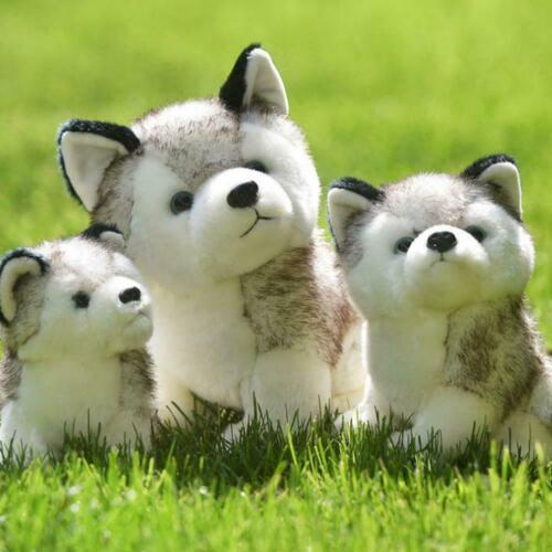"Realistic Husky Dog Plush Toy Stuffed Animal Soft Wolf 7"" Gift Cute Kid Pet"
