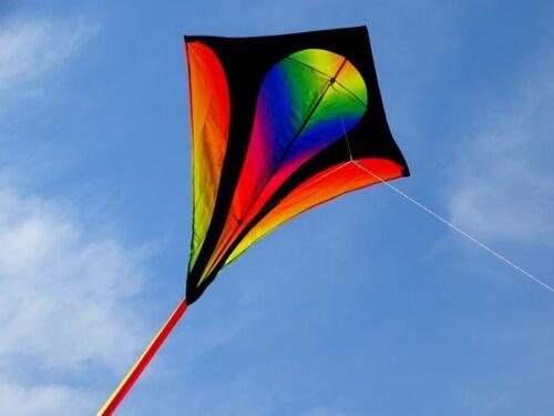 Einleiner-Drachen fliegt super Eddy XL gradient