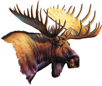 Moose Car Magnet Auto Truck Safe Hunting 9.5 Wide Magnetic Art Wild Animals