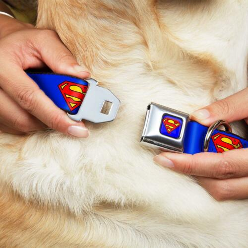 Made in USA Buckle Down Seatbelt Dog Collar or Leash Superman Shield DC Comics