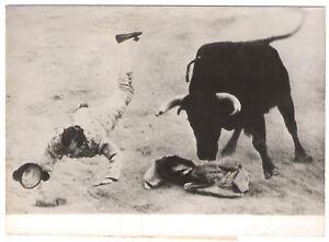 PHOTO-DE-PRESSE-CORRIDA-TAUROMACHIE-1951-MORENITO-DE-TALAVARA