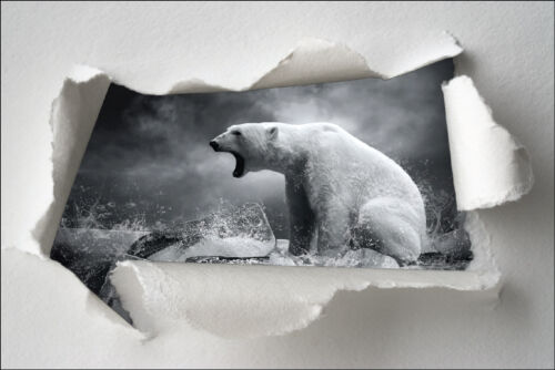 Sticker Trompe l/'oeil papier déchiré déco Ours polaire réf 1399