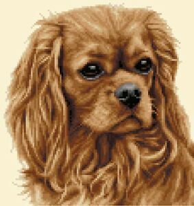 Cavalier king charles spaniel dog cross stitch kit all materials image is loading cavalier king charles spaniel dog cross stitch kit thecheapjerseys Images