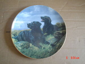 Lovely-Royal-Doulton-Franklin-Mint-Labrador-Collectors-Plate-READY-TO-GO
