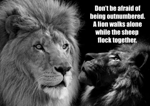 Lion Motivational Black White Poster Inspirational Quote Picture Be Strong Photo