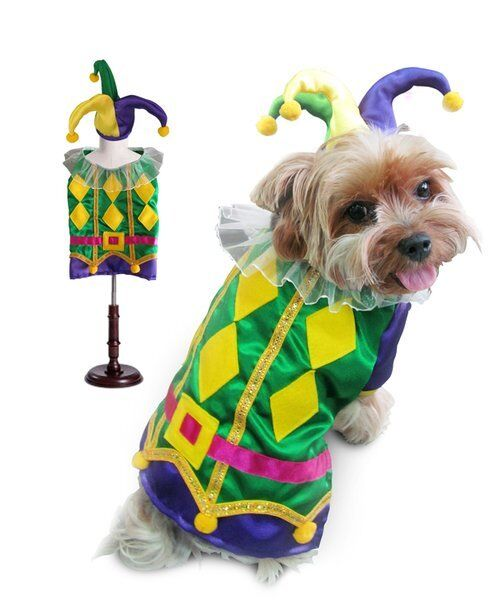 colorful Harlequin Mardi Gras Jester Dog Costume Diamond Ruffle Collar Shirt