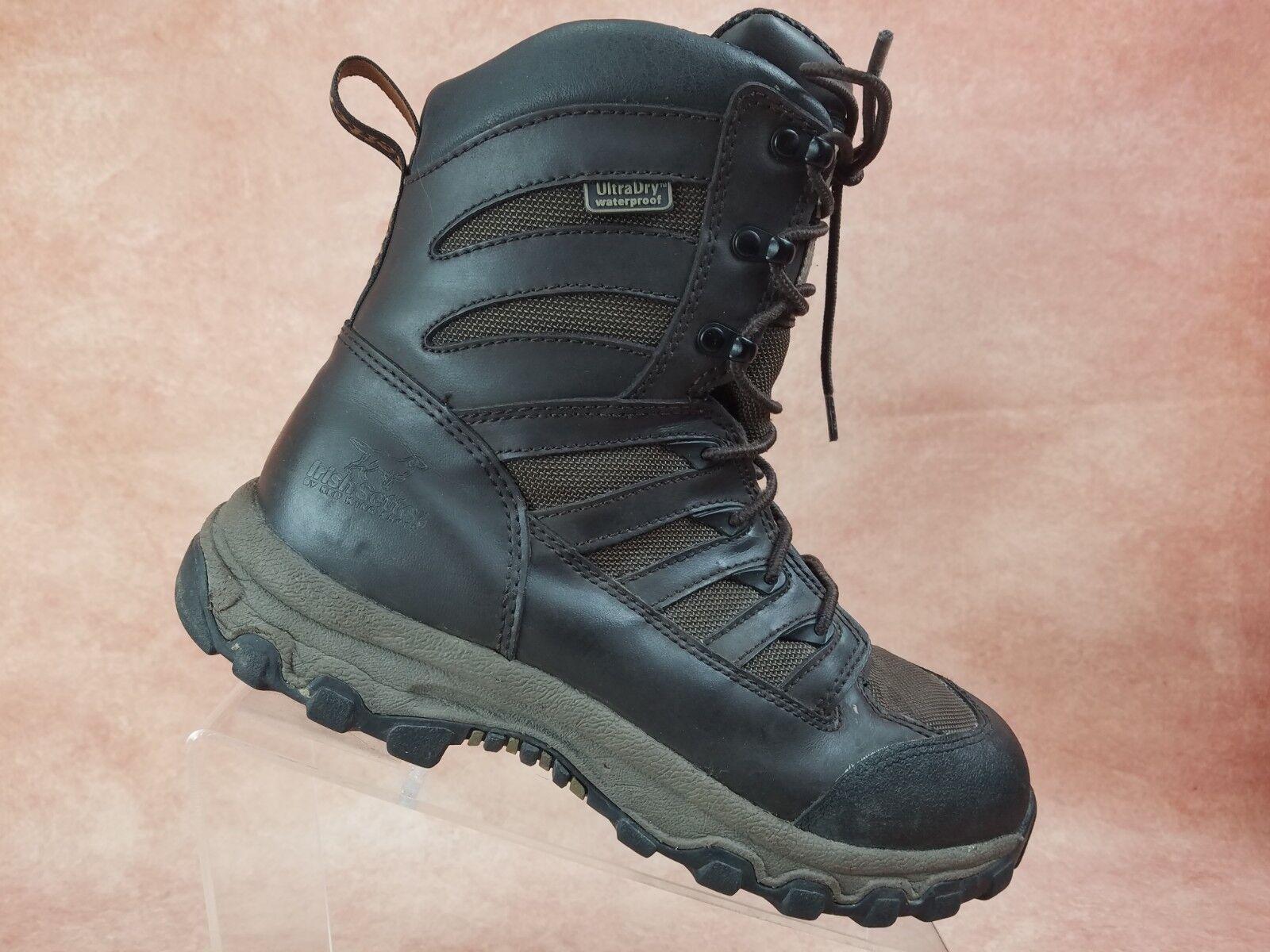 Irish Setter Lady Hawk Womens Ankle Boot Waterproof Size 9 Brown Leather 3886