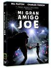 Pelicula Disney DVD mi gran amigo Joe