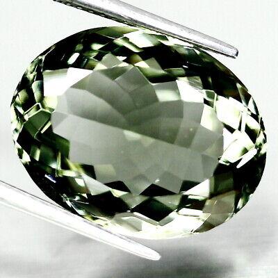 Frank Top Prasiolite : 16,46 Ct Natürliche Grün Prasiolith (grüner Amethyst)