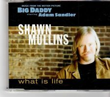 (FK915) Shawn Mullins, What Is Life (Big Daddy E.P) - 1999 CD