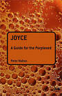 Joyce: A Guide for the Perplexed by Peter Mahon (Paperback, 2009)