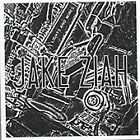 Jake Ziah - Lights and Wires (2008)