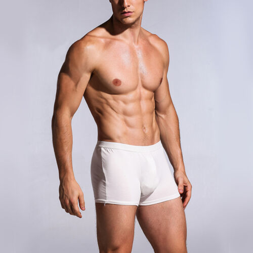 5 x Mens Disposable Modal Underwear Travel Business Shorts Boxer Briefs Trunks
