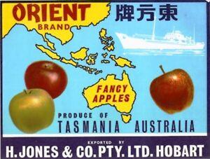SALE-Vintage-Tasmania-Apple-Case-Labels-Fruit-Art-Poster-034-baker-039-s-dozen-034-L-13