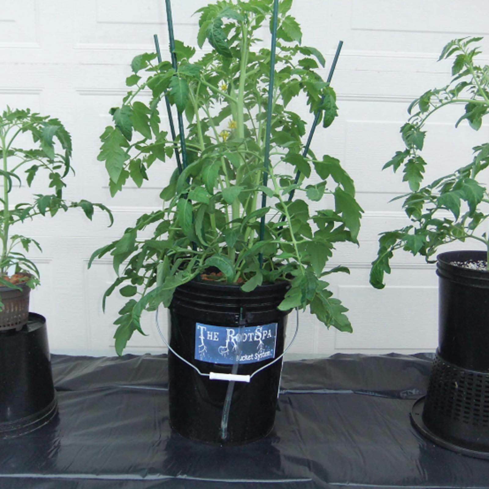 Image 2 - Active-Aqua-RS5GALSYS-Root-Spa-5-Gallon-Hydroponic-Bucket-Grow-Kit-System