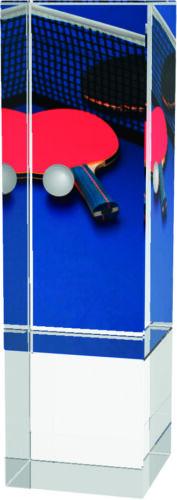 Gravure Gratuite 3 Tailles Verre de tennis de table Trophée solide Crystal Award 130 mm